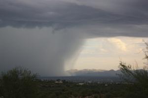 rains JAS 07-1108411